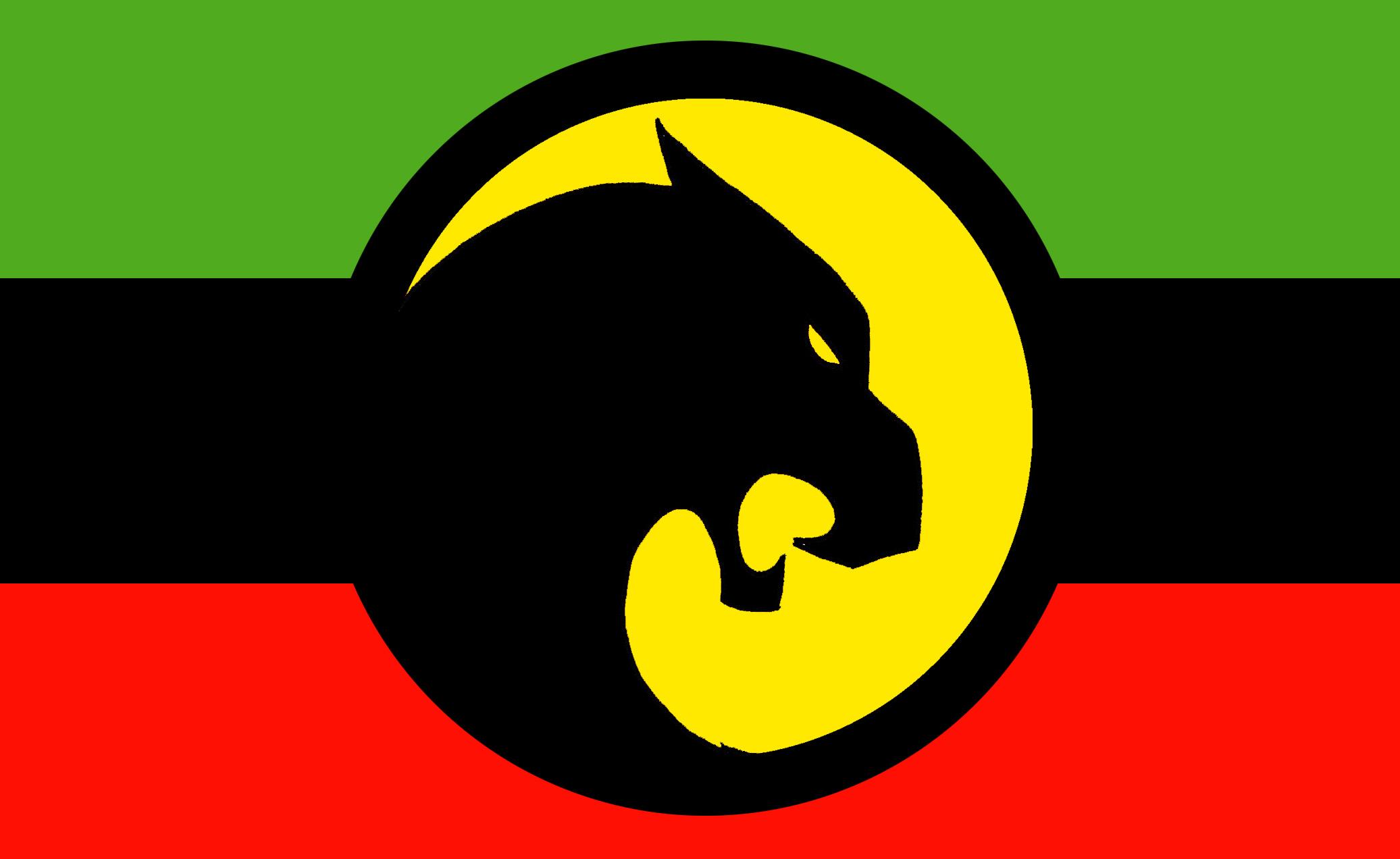 Black Panther Flag